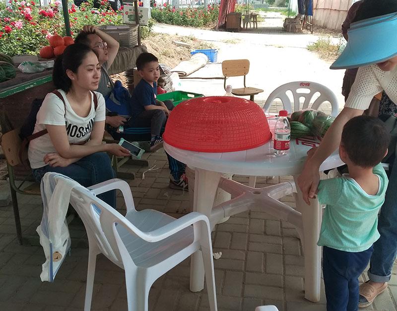 缤纷儿童节 带孩子去庞各庄采摘西瓜去